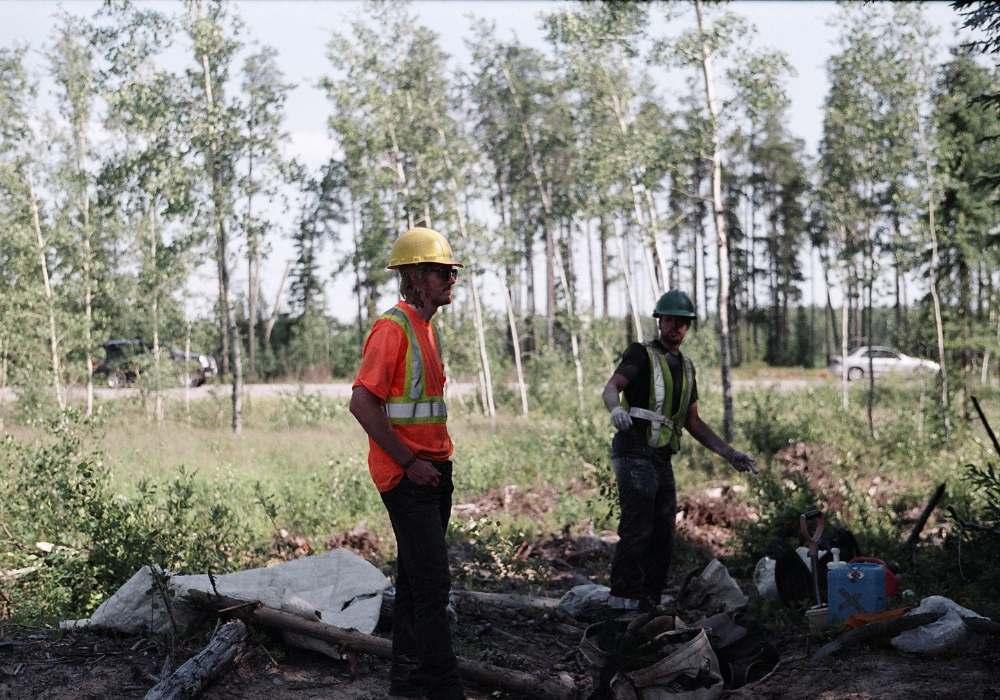 baby trees treeplanting mindful steward