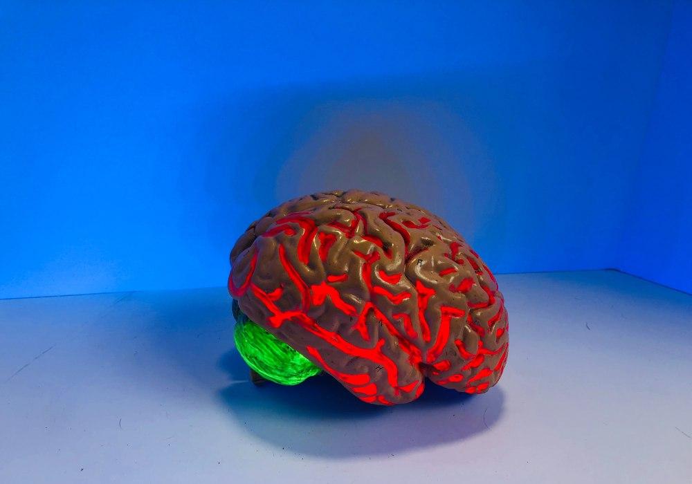 neurohacking-mindset-mindfulsteward