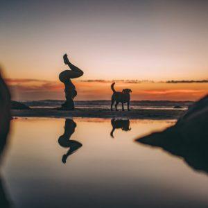 the mindful steward lauren rudick yoga